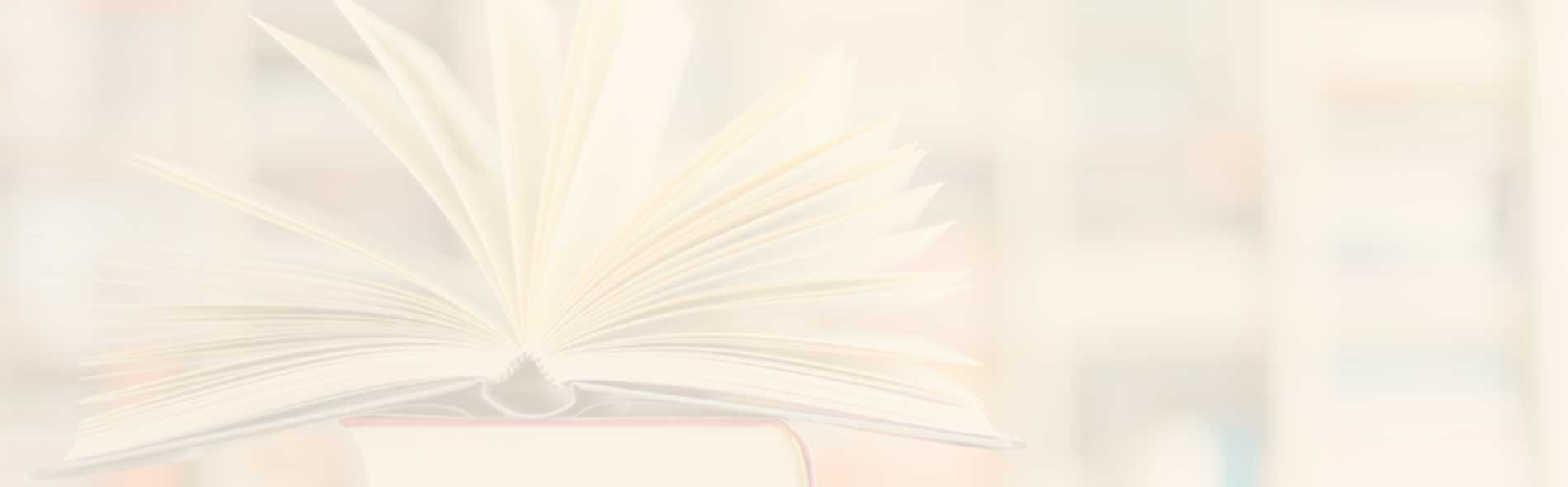 Papier Buch Reisinger